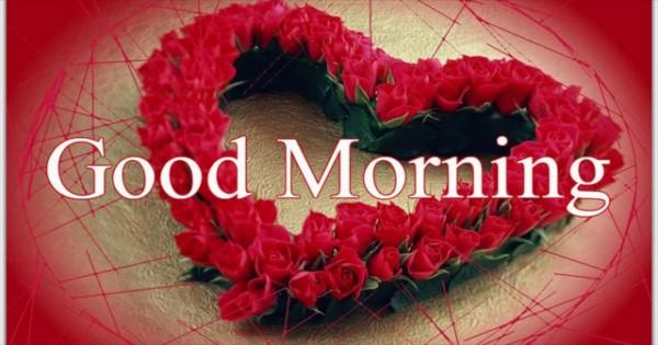 بالصور صباح الورد حبيبتي , تحية الصباح للعشاق 3266 6