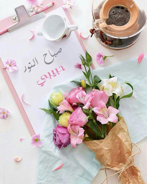 بالصور عبارات صباحية للحبيب , صباح الورد حبيبى 4232 10