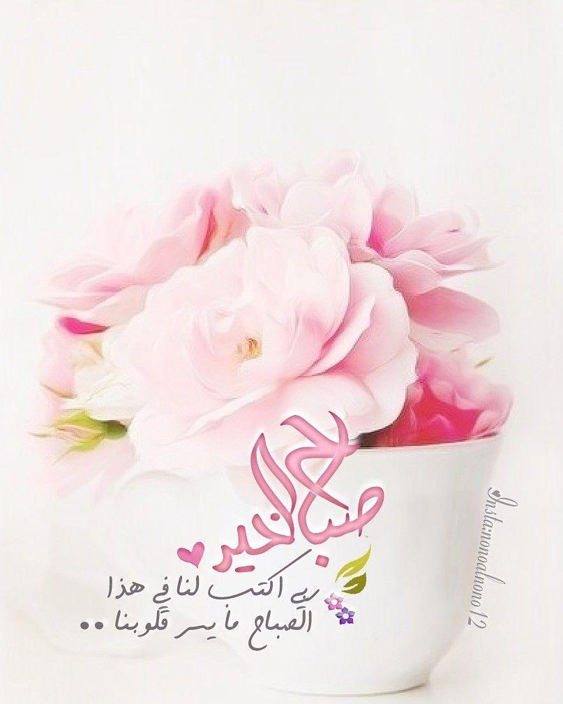 بالصور عبارات صباحية للحبيب , صباح الورد حبيبى 4232 6