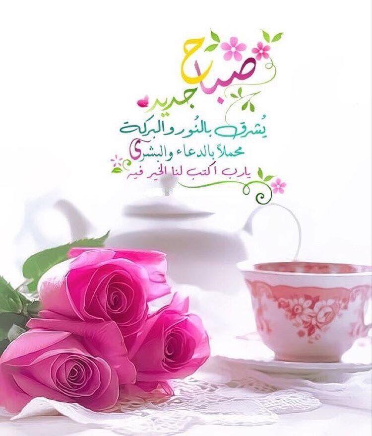 بالصور عبارات صباحية للحبيب , صباح الورد حبيبى 4232 7