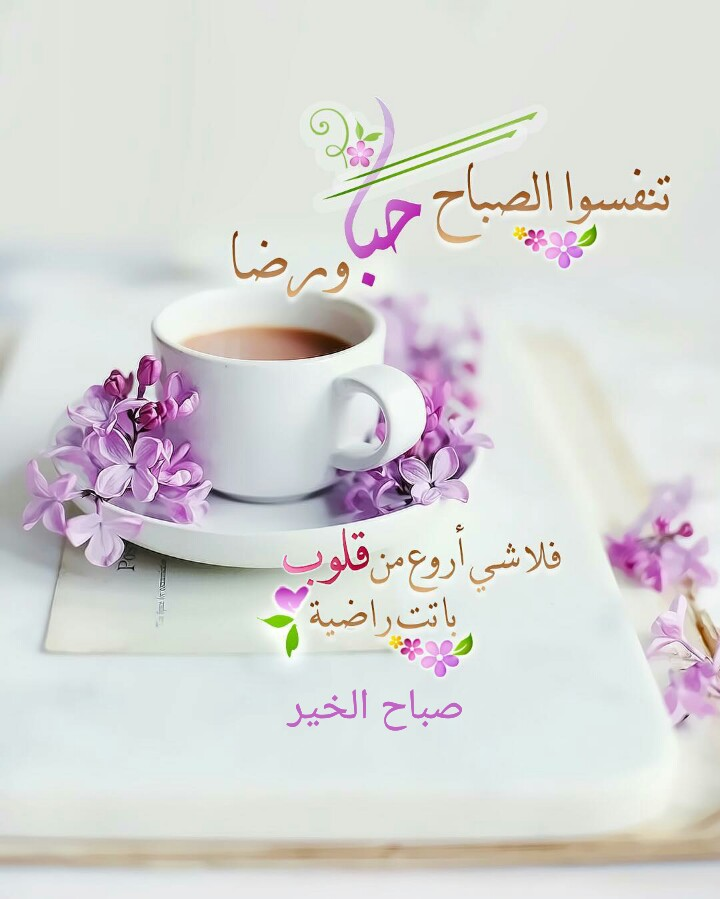 بالصور عبارات صباحية للحبيب , صباح الورد حبيبى 4232 8