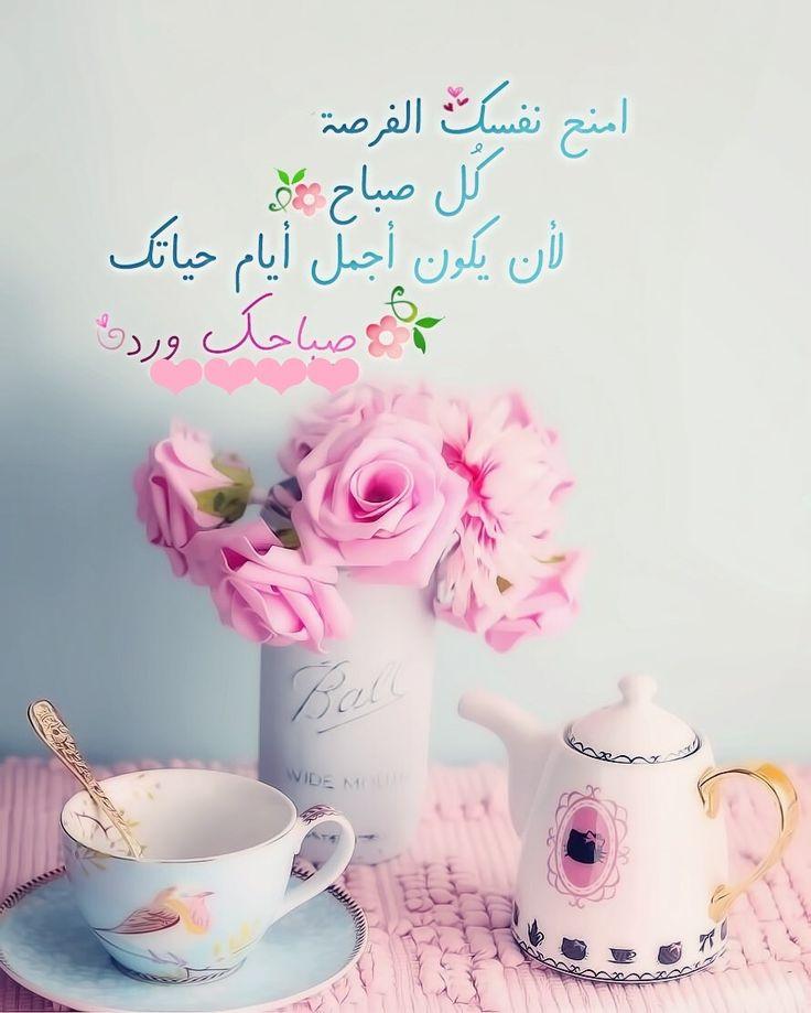 بالصور عبارات صباحية للحبيب , صباح الورد حبيبى 4232 9