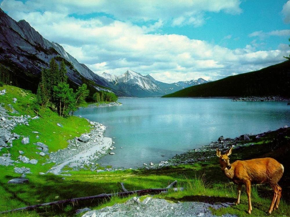 بالصور اجمل الصور الطبيعية في العالم , خلفيات الطبيعة 2019 4679 10