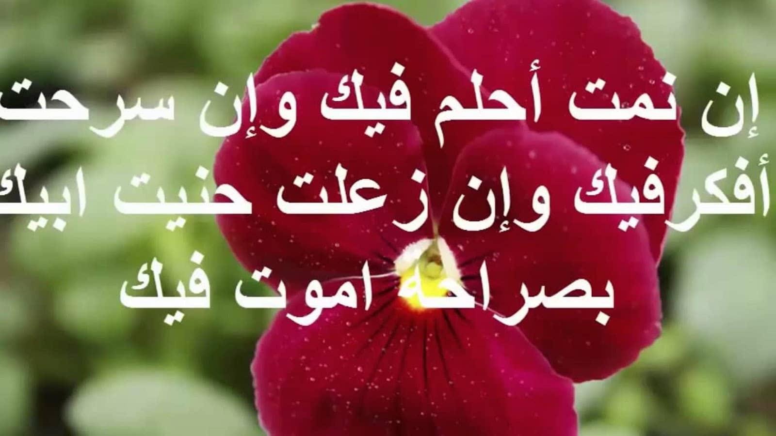 بالصور رسائل حب ورومانسية , شوف ارق رسالة حب للحبيبين 5800 1