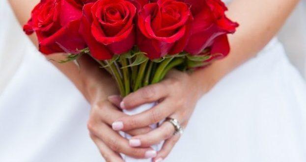 صورة صور ورد صور ورد , اجمل انواع الورود