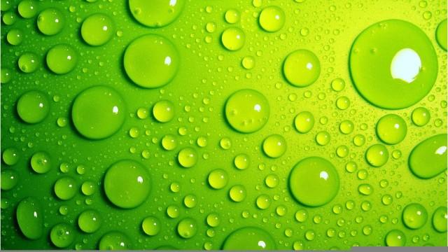 بالصور خلفية خضراء , اجمل خلفيات خضراء من الطبيعه 1734 2