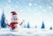 بالصور صور فصل الشتاء , من اجمل فصول السنه دفئا 1748 17.jpg 110x75