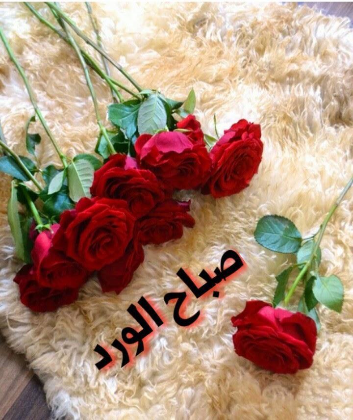 صورة صباح الخير حبيبتي , عبارات رقيقه في الصباح