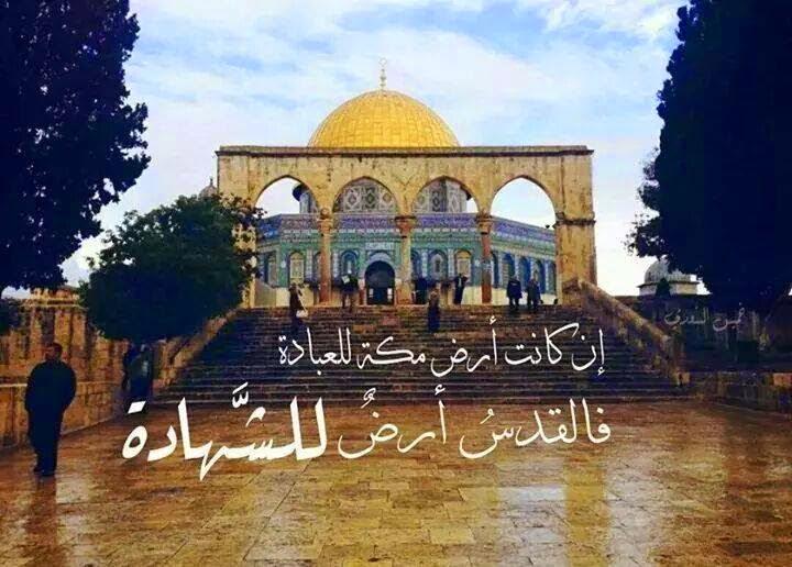 بالصور اجمل الصور للمسجد الاقصى , اعظم مسجد وضع فى العالم 1789 7