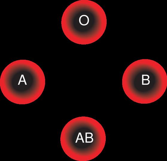 صورة رجيم فصيلة الدم , رجيم صحى لجميع فصائل الدم 1864