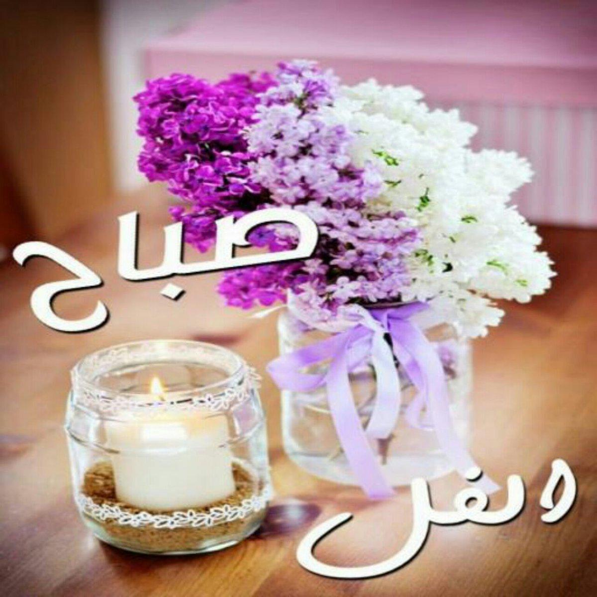 صورة صباح الورد والفل , صباح جميل بالورود