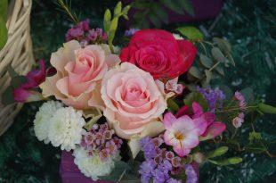 صور ازهار جميلة , اجمل الازهار فى الحدائق