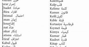 بالصور كلمات عربية , احلى الكلمات العربية 2306 3 310x165