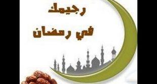 صوره رجيم رمضان سالي فؤاد , لانقاص الوزن برجيم سالي فؤاد في رمضان