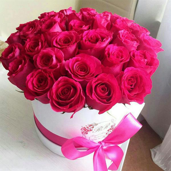 بالصور ورود الحب , اجمل الورود للحب 2389 1