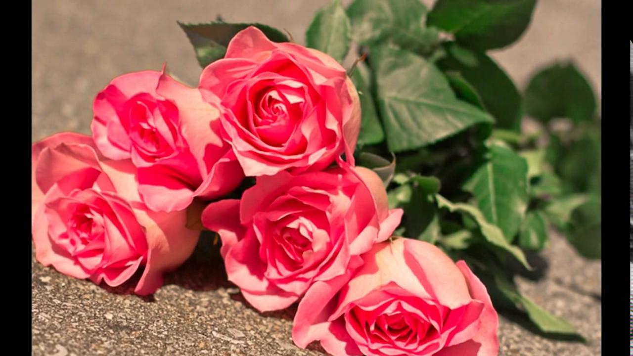 بالصور ورود الحب , اجمل الورود للحب 2389 2