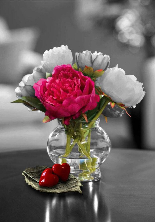 بالصور ورود الحب , اجمل الورود للحب 2389 3
