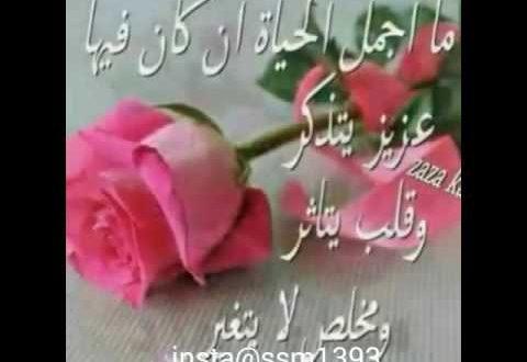صور مساء الورد حبيبي , اجمل مسا للحبيب