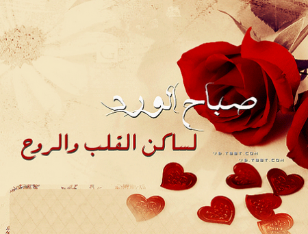 بالصور مساء الورد حبيبي , اجمل مسا للحبيب 2392