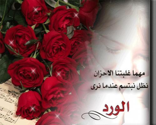بالصور كلمات عن الورد , اجمل ما قيل عن الورد 2467 2