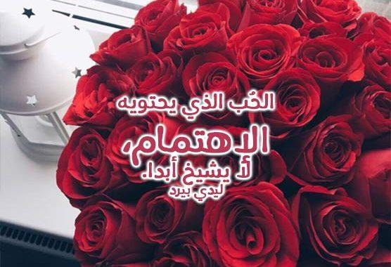 بالصور كلمات عن الورد , اجمل ما قيل عن الورد 2467 5
