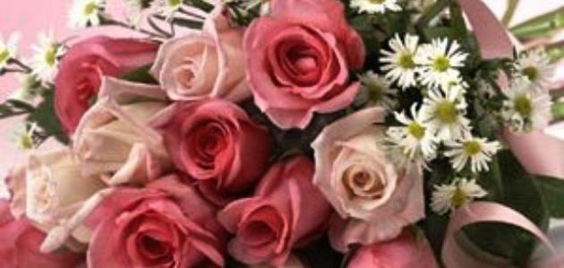 بالصور كلمات عن الورد , اجمل ما قيل عن الورد 2467 6