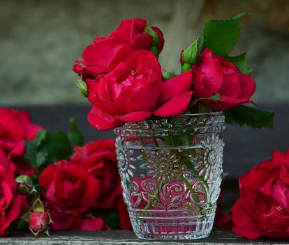 بالصور كلمات عن الورد , اجمل ما قيل عن الورد 2467
