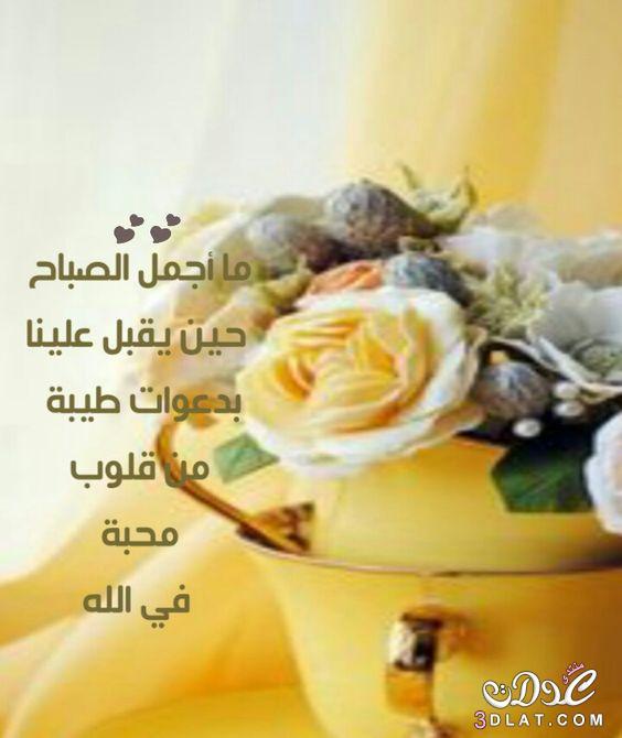 بالصور صورصباح الخير , اجمل صور صباح الخير 2584 3