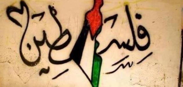 بالصور شعر عن فلسطين , اجمل الكلمات عن فلسطين 2603 3