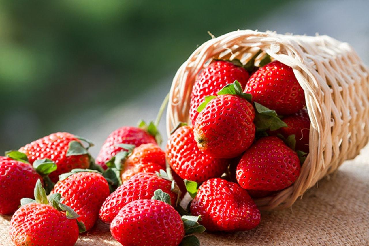 صورة فوائد الفراولة , ماذا تعرف عن فاكهة الفراولة