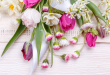 بالصور خلفيات زهور , بوسترات ورد خلابه جدا 2725 10.jpg 110x75
