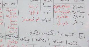 بالصور معاني الكلمات العربية , معني الكلمات العربية 3591 3 310x165
