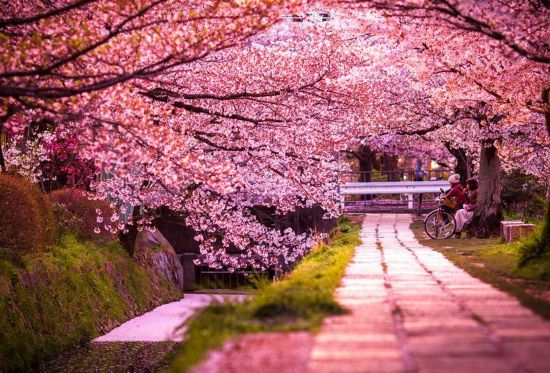 بالصور اجمل مناظر العالم , خلفيات طبيعيه هادئه جميله 2182 4