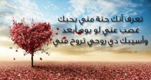 بالصور اجمل رسالة حب , احلى حب رومانسي 2635 12 310x165