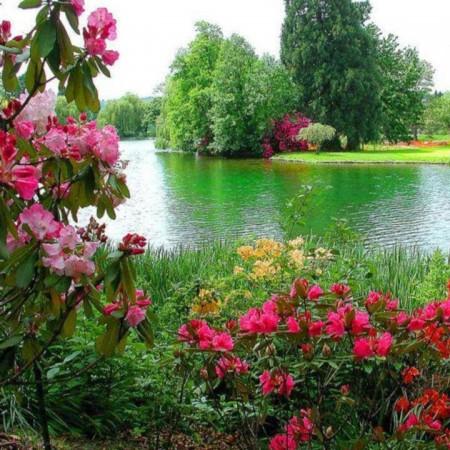 بالصور خلفيات طبيعة , اجمل الخلفيات الطبيعية 2653 2