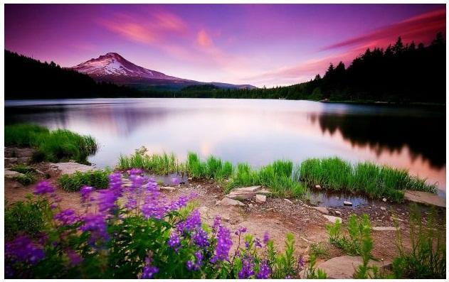 خلفيات طبيعية Hd مناظر رائعه بجوده عاليه هل تعلم