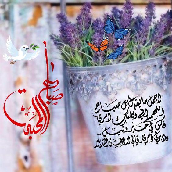 بالصور صور صباح الخير ومساء الخير , رمزيات مسائيه وصباحيه للنشر 2799 11