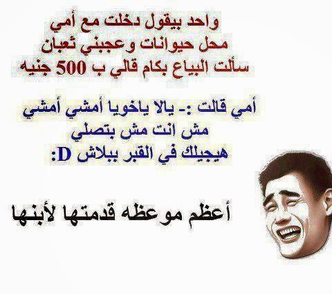 صورة اجمل الصور المضحكة مع التعليق , كومنتات فكاهيه جدا