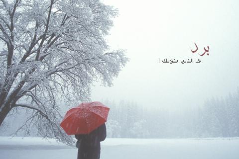 صورة عبارات عن الشتاء , خواطر وكلمات عن المطر
