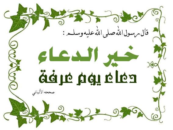بالصور صور عن يوم عرفه , رمزيات وقفه عيد الاضحى 3008 3