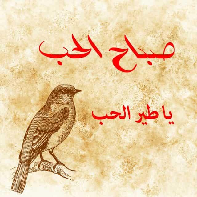 بالصور صور صباح الحب , تحيات صباحيه منوعه وجميله 3062 7