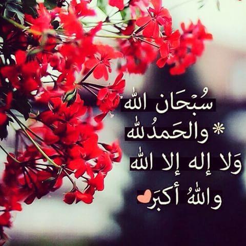 بالصور اجمل الصور الدينية , احلى الرمزيات الاسلاميه للنشر 3066 2