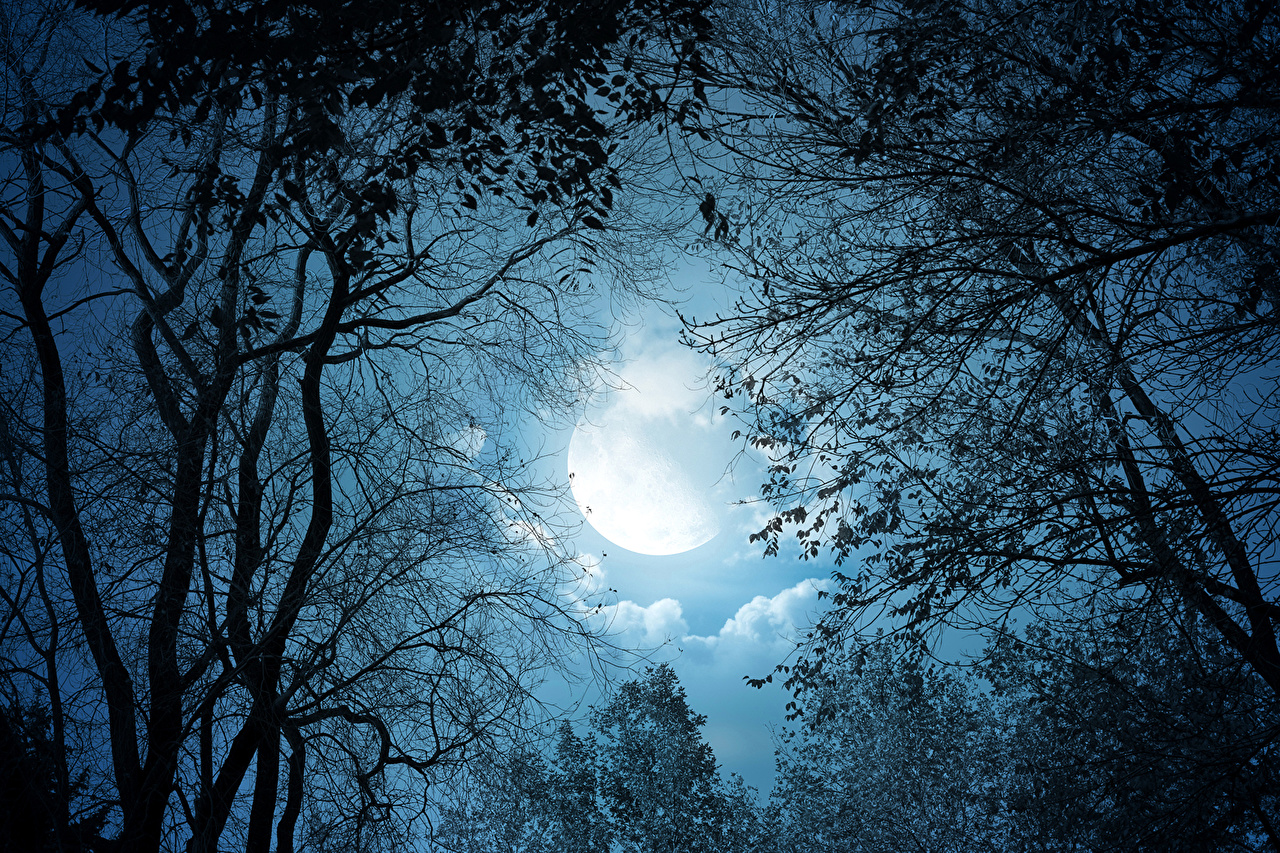 بالصور صور عن القمر , خلفيات جميله جدا عن سحر السماء 3150 8