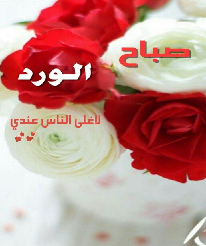 بالصور صباح الورد للورد , احلى تحيه صباحيه بلون الورود 3223 10