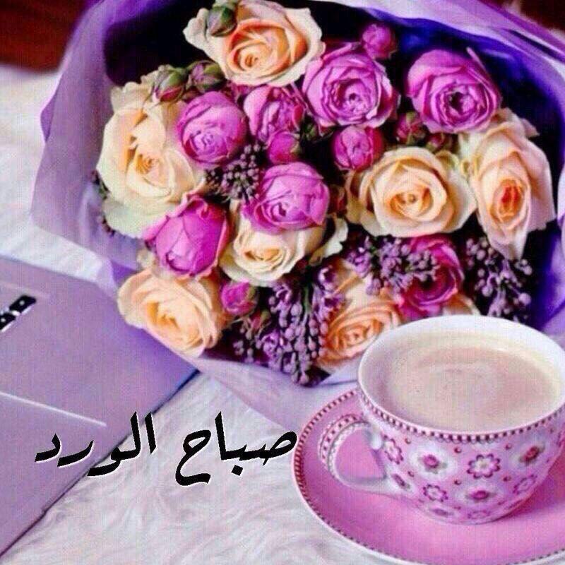 بالصور صباح الورد للورد , احلى تحيه صباحيه بلون الورود 3223 3