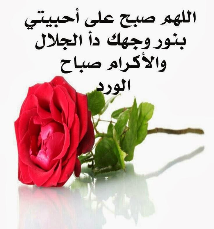 صورة رسائل مساء الخير للاصدقاء , اروع صور مساء الخير