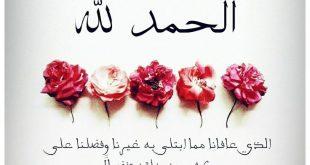 بالصور صور عن الحمد لله , الحمد لله افضل انواع الحمد علي الاطلاق 3380 12 310x165