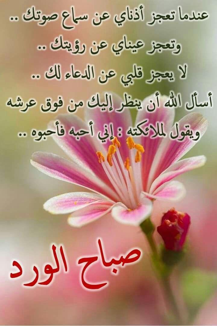 بالصور رسالة حب صباحية , اجمل رسائل الحب الصباحية 3393 2