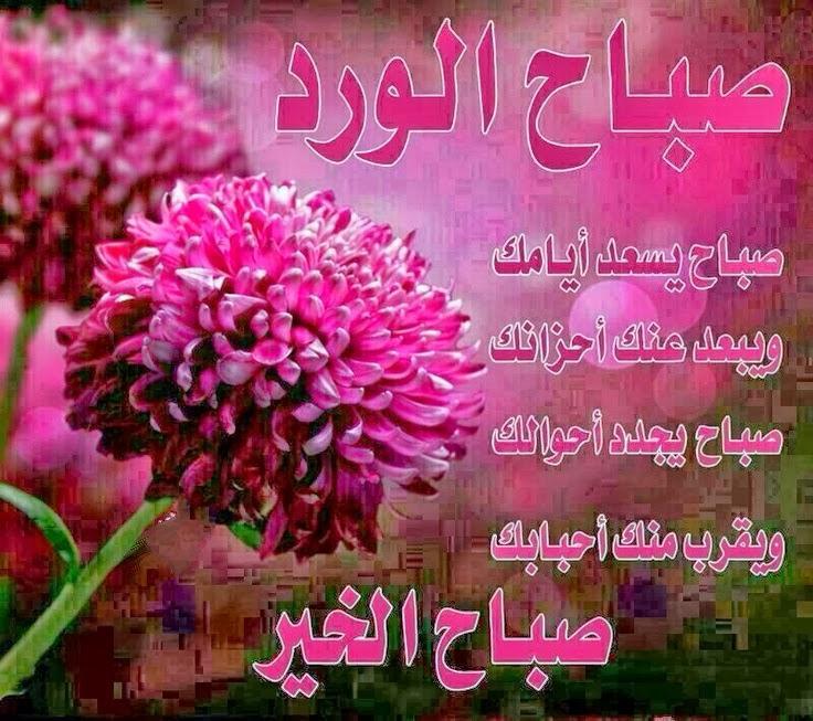 بالصور رسالة حب صباحية , اجمل رسائل الحب الصباحية 3393 8