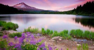 بالصور صور طبيعة خلابة , اجمل الصور الطبيعية الساحرة 3417 10 310x165